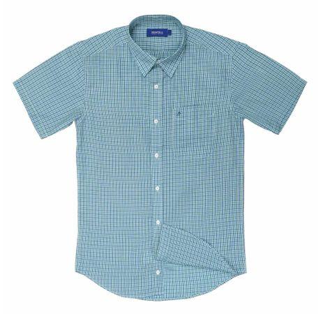 camisa-pierre-0143-verde-l